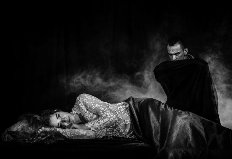 Dracula\'s Visitphoto preview