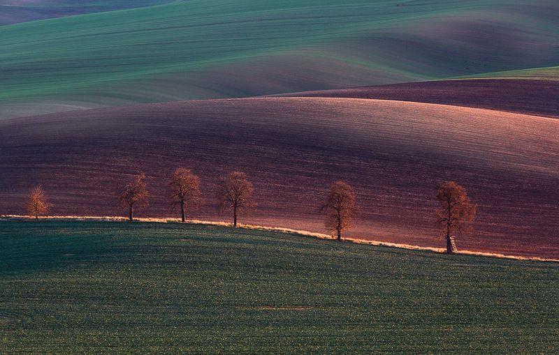 Moravia,czeh,fields,landscapes Moravian eveningphoto preview