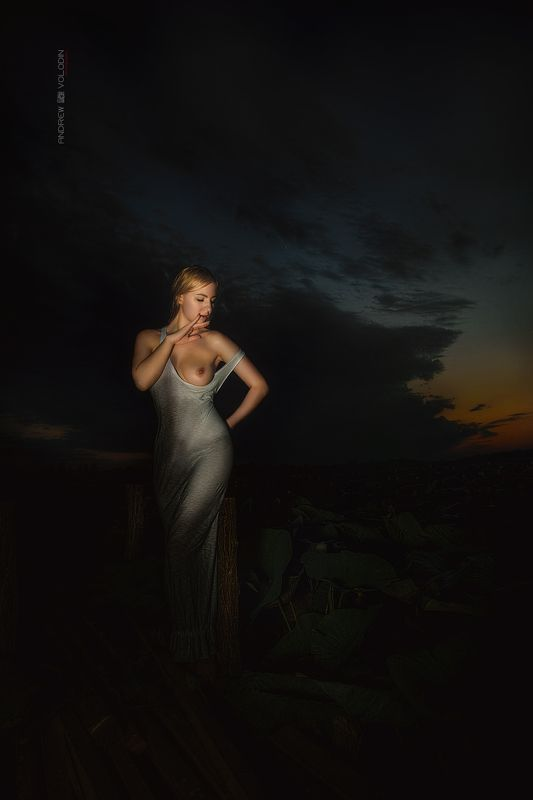 девушка ночь грудь закат озеро лотосы Ночная русалкаphoto preview