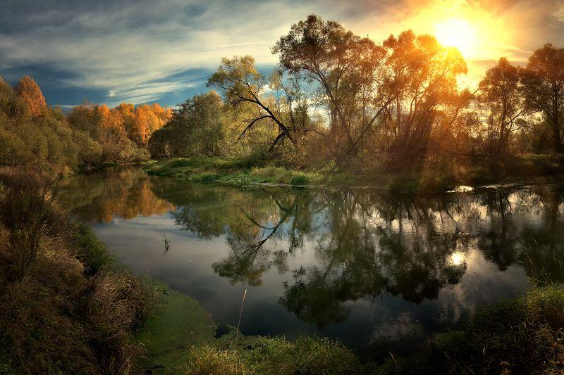 лес, природа, пейзаж, осень, река, вода, ручей, подмосковье Истраphoto preview