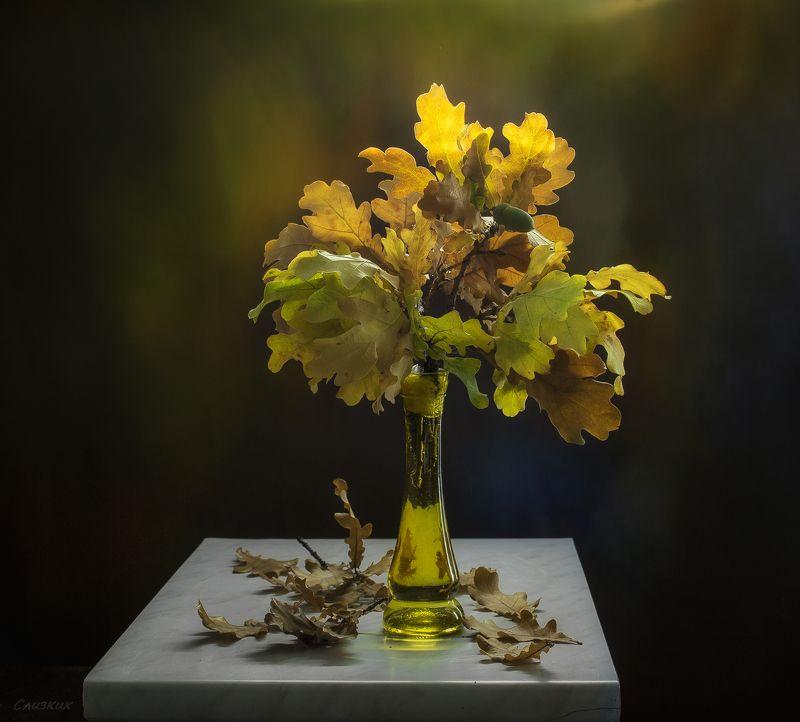 композиция,фантазия,букет,осень,свет И букет простой, и день обычный,и рисунок тоже очень прост...photo preview