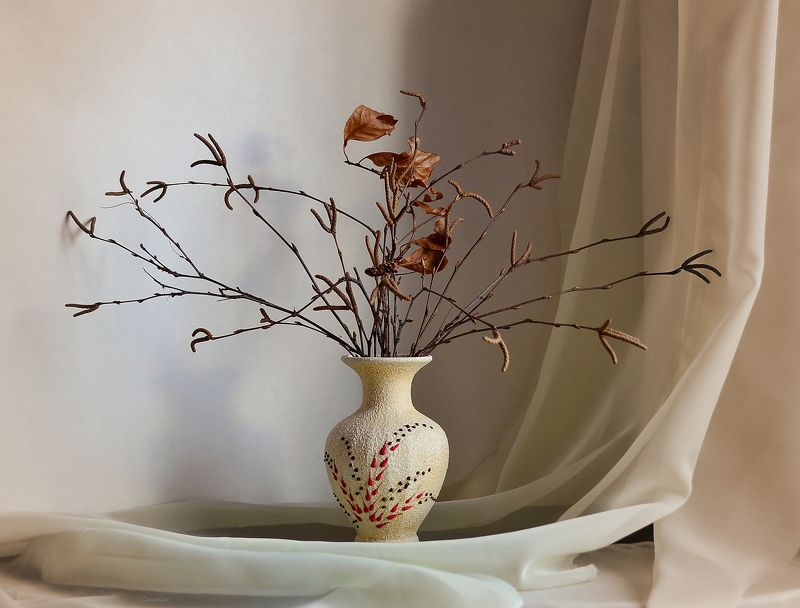 композиция,свет,тон,ветки,ваза Стояла ваза на столе, а в вазе берёзы ветки..photo preview