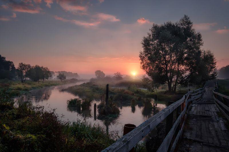 филипповское, пейзаж, туман, мост, мостик, деревянный, утро, рассвет, шерна, река Рассвет на Шернеphoto preview