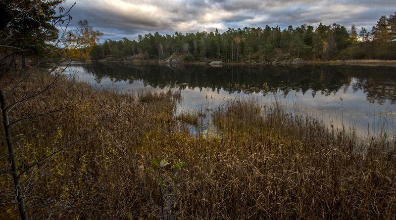 швеция Озеро вечернее 2photo preview