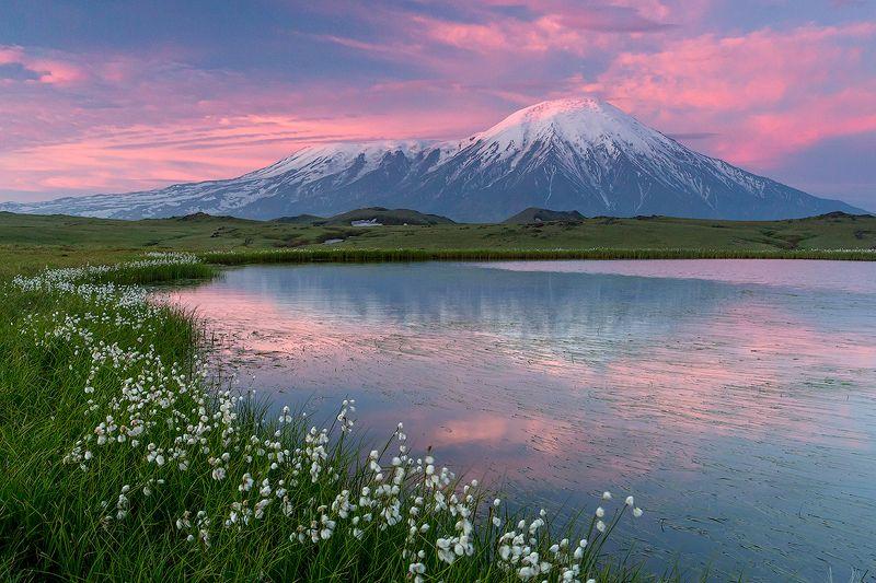 камчатка, вулкан, пейзаж, путешествие, лето, фототур,  Нежный рассветphoto preview