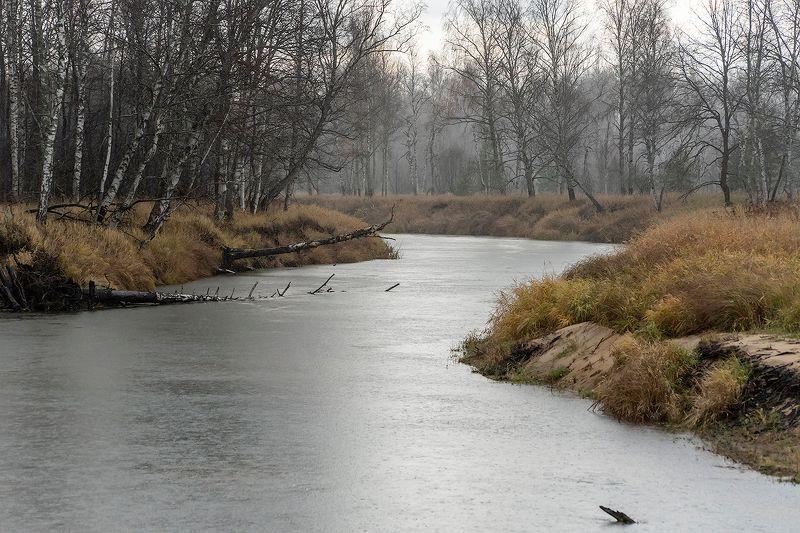 осень, лесная река, непогода, дождь, мещёра, рязанская область Pro контрасты поздней осениphoto preview