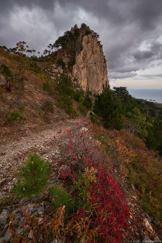 крым,пейзаж,осень,горы,скала,вечер,природа Осень в крымских горахphoto preview