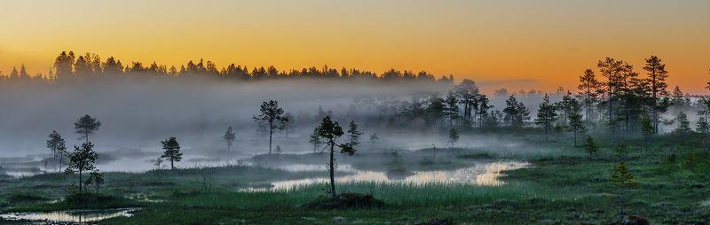 природа, пейзаж, карелия, панорама, утро, восход, рассвет, болото, туман, Про туманыphoto preview