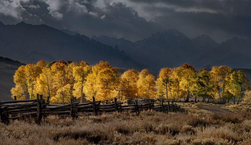 Autumn in Coloradophoto preview