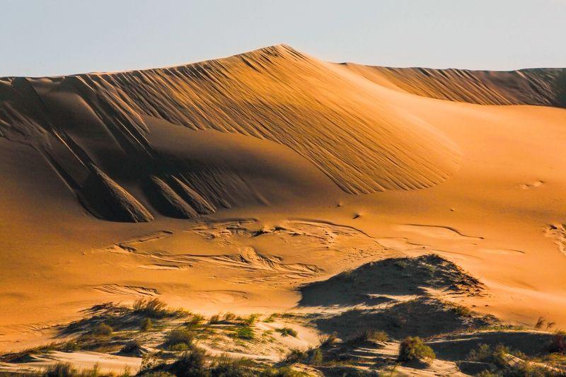 песок,пустыня,песчаная гора,дагестан.бархан Золотые пески..photo preview