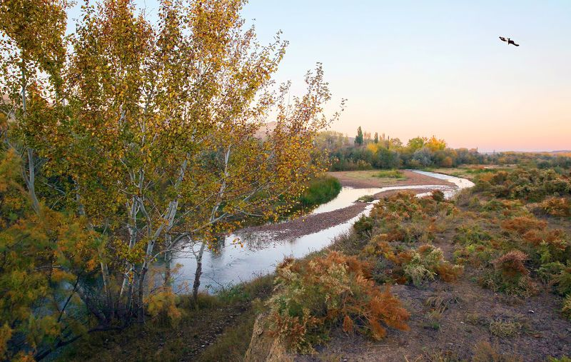 осень,река,вечер,природа,пейзаж Осенний пейзаж..photo preview