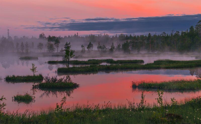 природа, пейзаж, карелия, панорама, утро, восход, рассвет, болото, туман, остров, *photo preview