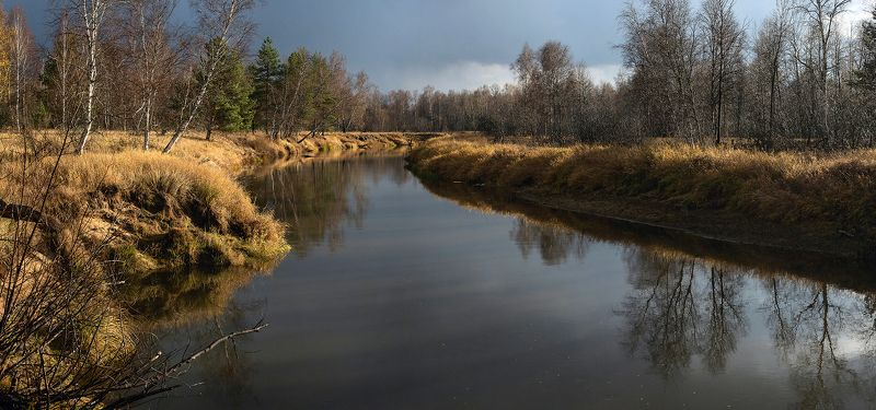 осень, лесная река, непогода, дождь, мещёра, рязанская область Pro мимолётную улыбку осениphoto preview