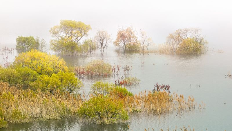 Fall into the lakephoto preview