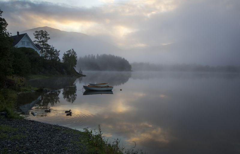 норвегия Утренняя 4photo preview