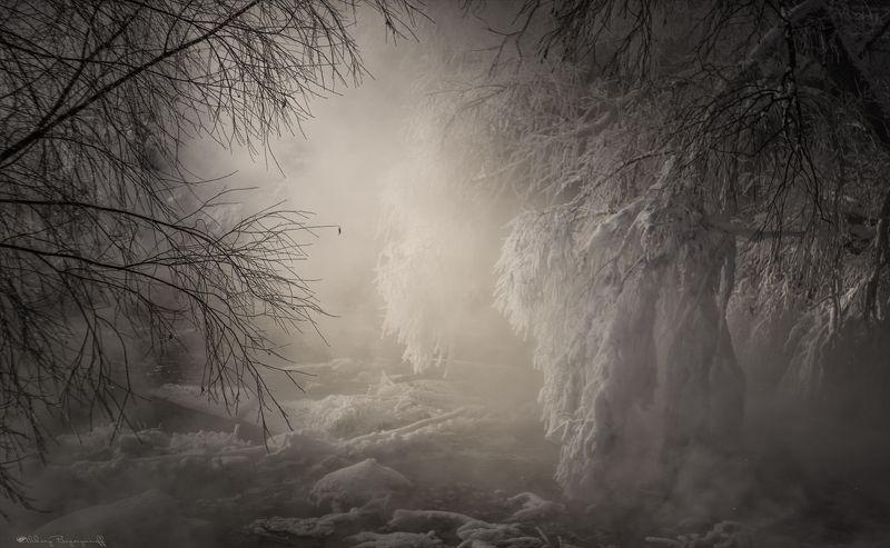 Идеальный мороз!photo preview