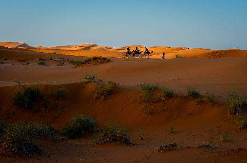 Утро в пустыне.photo preview