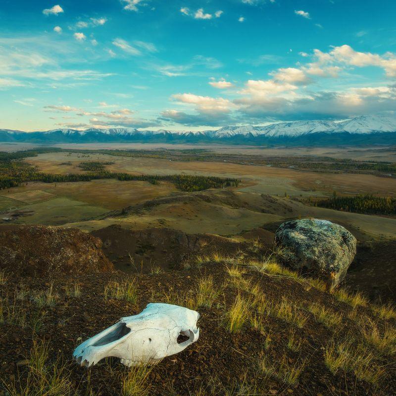 россия, алтай, республика алтай, сибирь, осень, природа, пейзаж, горы, хребет, череп, закат, вечер, река, курайская степь Тут должно быть философское название))photo preview