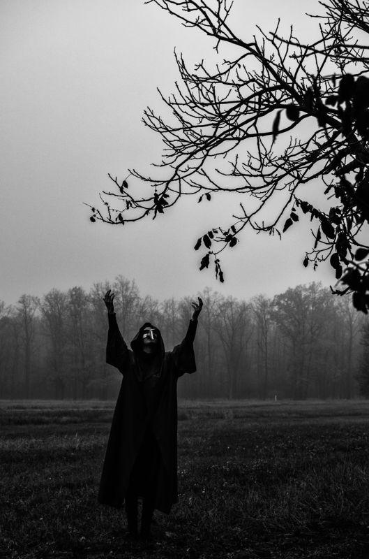 Satan\'s Harvestphoto preview