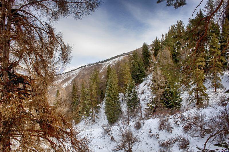 кыргызстан, горы Палитра ноябряphoto preview
