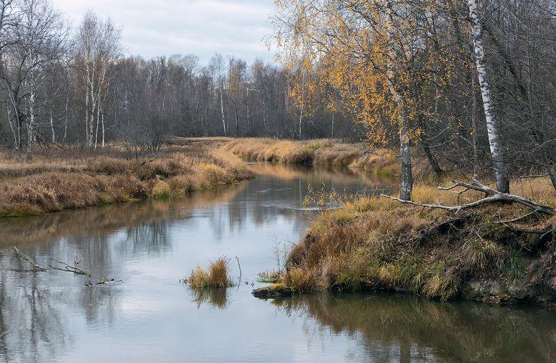 осень, времена года, лесная река, река, лето, весна, зима, мещёра, рязанская область Pro времена года «наоборот»photo preview