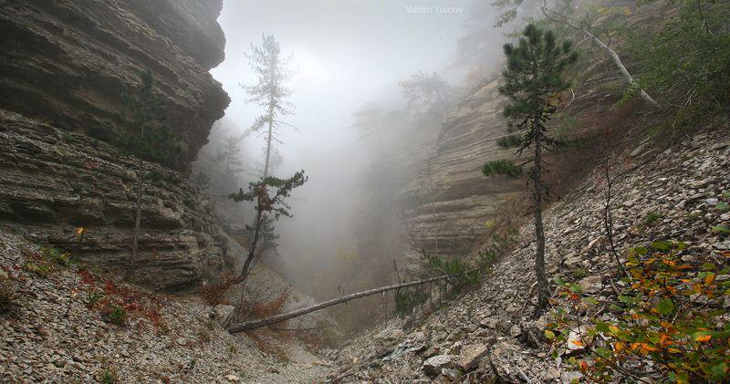 Туман в скалистом ущельеphoto preview