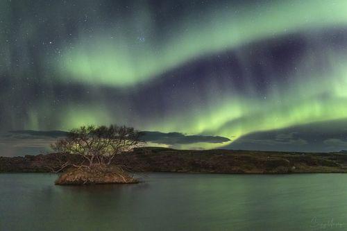 Green water of Myvatn lake. Iceland.