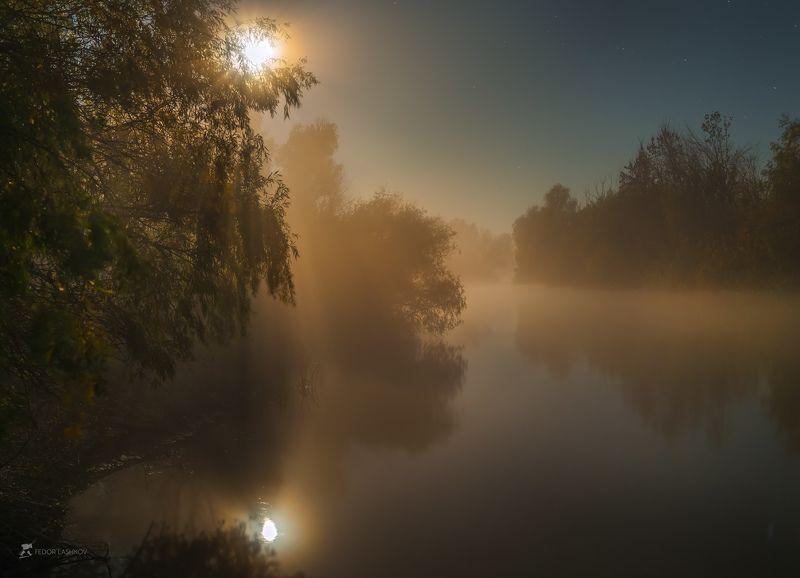 pentax645z, pentax, астраханская область, ночь, полнолунье, луна, лучи, туман, деревья, магия, свет, река, волга, дельта, отражение, заповедник, астраханский государственный биосферный заповедник, Осенние сны Волгиphoto preview