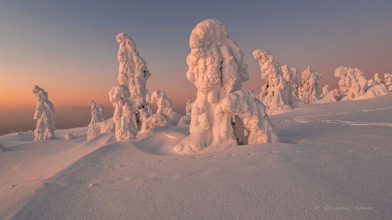 север, кольский, заполярье, кандалакша,гора волостная ***photo preview