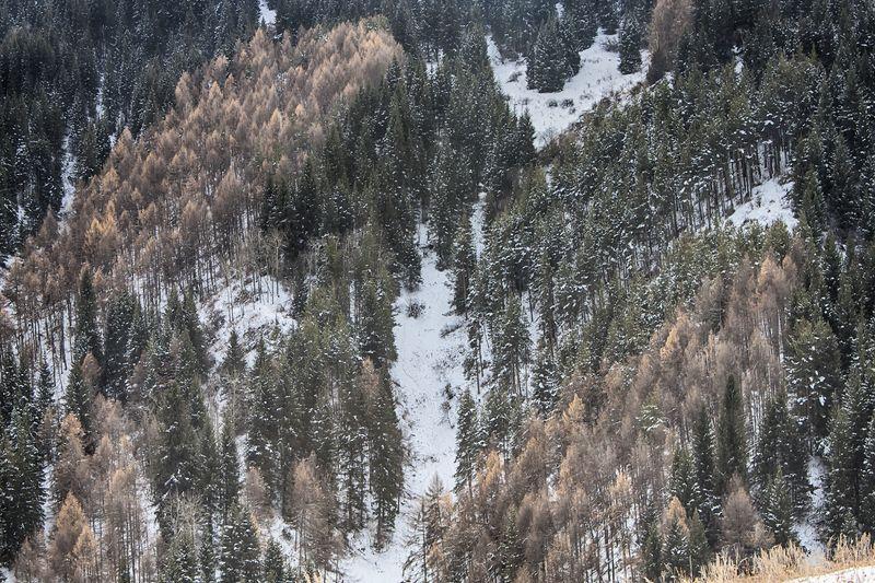 кыргызстан, горы Наряд ноябряphoto preview