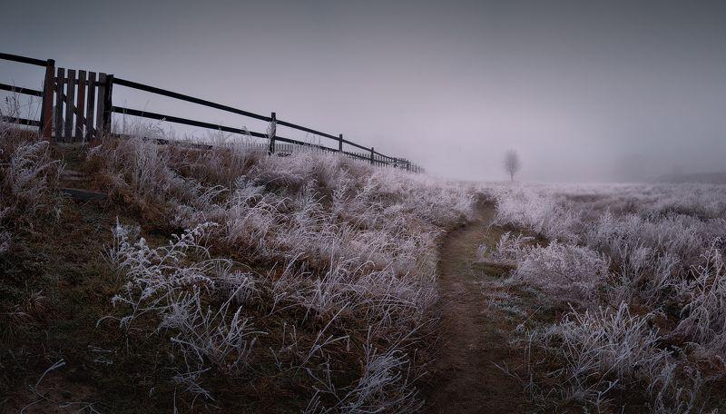 украина, коростышев, тетерев, река, утро, туман, мороз, тишина, пейзаж, природа, гармония, мир, душа,  нежность, доверие, созерцание, живой, путь, жизнь, молчание, чистота, близость, фотограф, чорный, Глубже в тишинуphoto preview