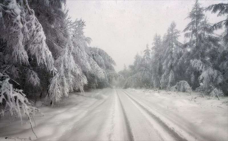 Белая зима.photo preview