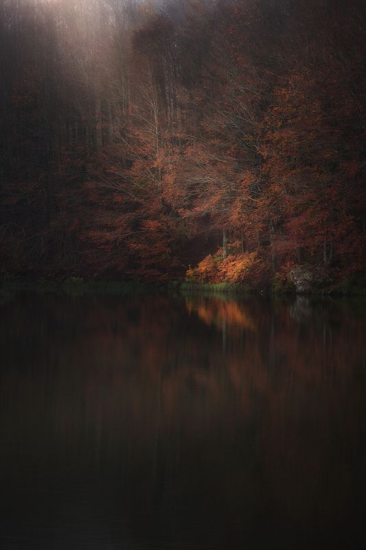red autumn soft autumn continues to the lake фото превью