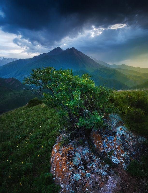 киргизия, кыргызстан, средняя азия, горы, каньон, скалы, пейзаж, лето, ущелье, вечер, закат Облачное шоуphoto preview