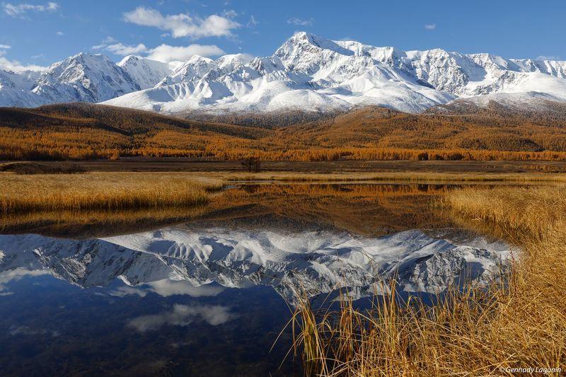 алтай, altai, осень, autumn, горы, mountains, озеро, lake В зеркальном плену фото превью