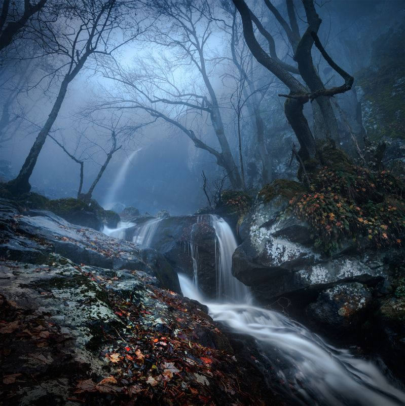 landscape, nature, scenery, forest, wood, mist, misty, fog, foggy, waterfall, fall, autumn, mountain, vitosha, bulgaria, туман, лес A Late November Dayphoto preview