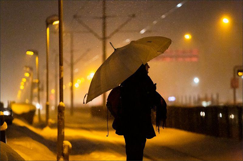 зима ***photo preview