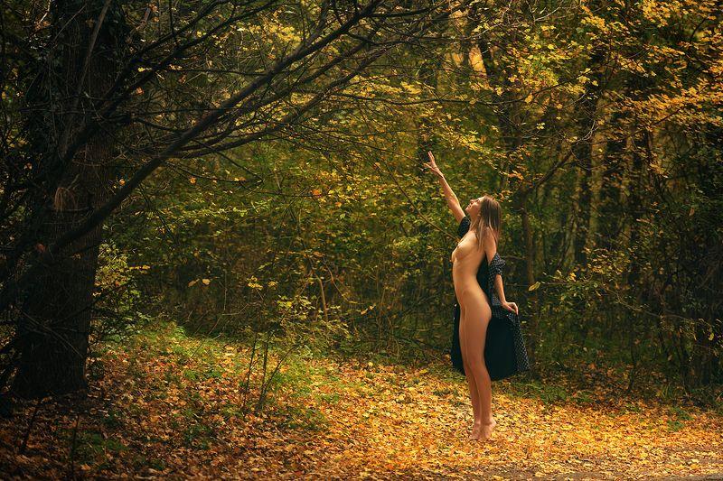 девушка, модель, ню Светphoto preview