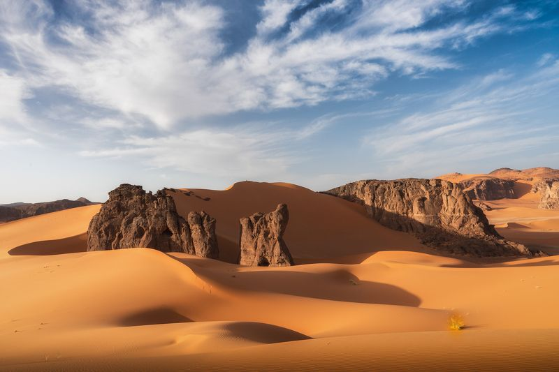 алжир, сахара, пустыня, песок, тадрарт, дюны Новый деньphoto preview