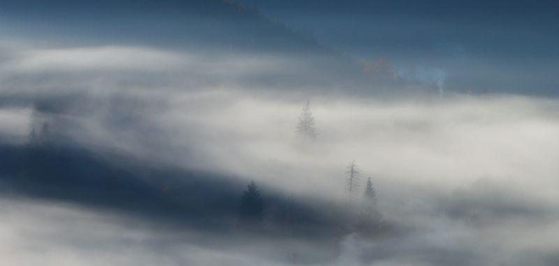 горы, утро, туман, дымок, карпаты Дымокphoto preview