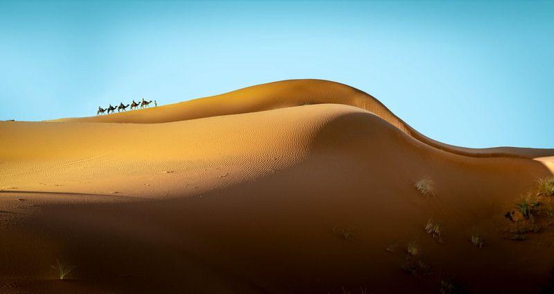 Дюны.photo preview