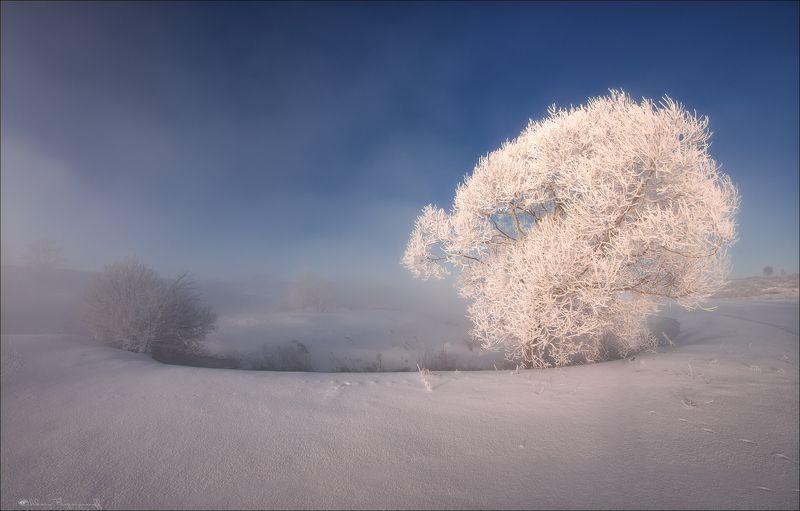 Зимы украшения.photo preview