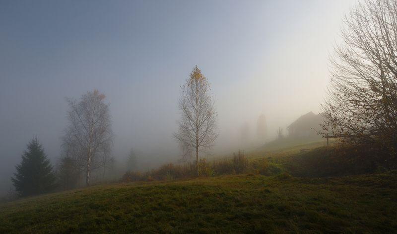 горы, туман, утро, домик Ясиня.photo preview