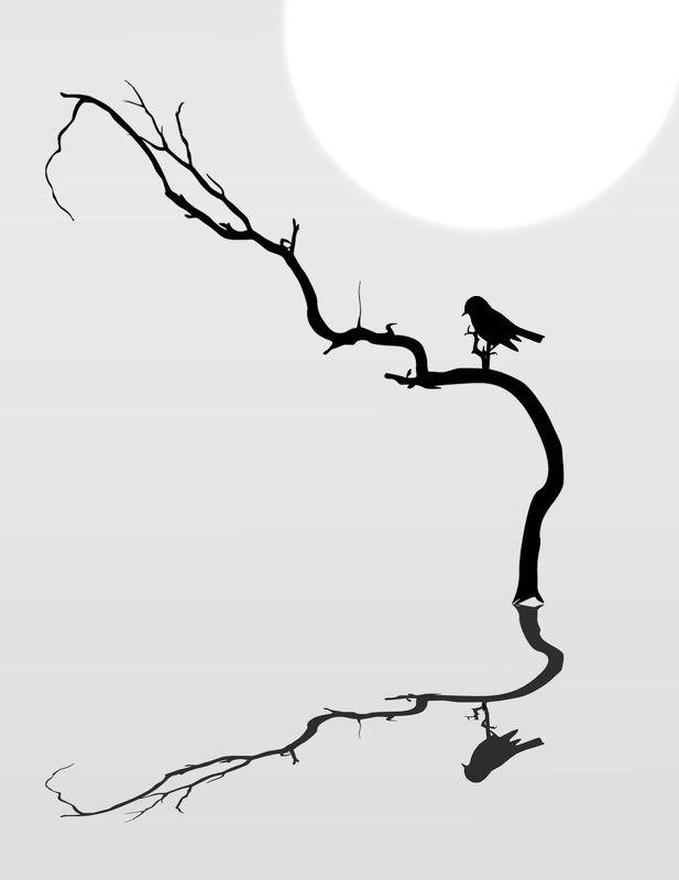 природа, силуэт, дерево, птица ******photo preview