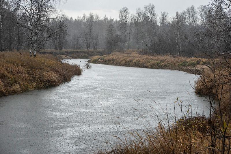 осень, лесная река, непогода, дождь, мещёра, рязанская область Pro дождливые фактуры поздней осениphoto preview