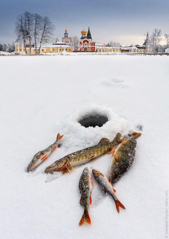 иверский монастырь, валдай «Особенности валдайской рыбалки в зимний период»photo preview