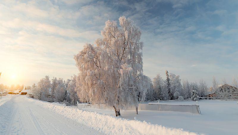 зима,коми,природа,север,закат,мороз,снег,деревня,иней,winter, komi, nature, north, sunset, frost, snow, village, frost Ну вот и зимаphoto preview