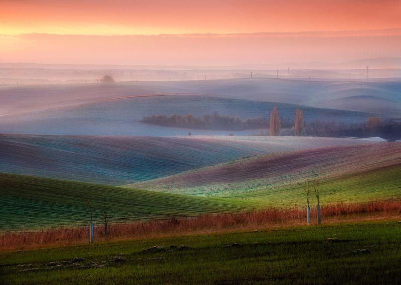 моравия, рассвет, холмы, поля, волны, осень Моравский ноябрьphoto preview
