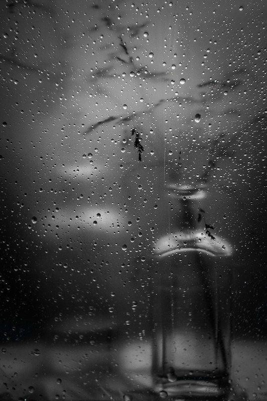 дождливое*photo preview