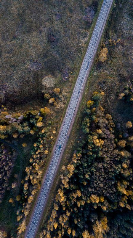 ярославская область, осень Сквозь осеньphoto preview